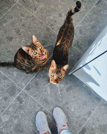 Raja en Nacho (5)