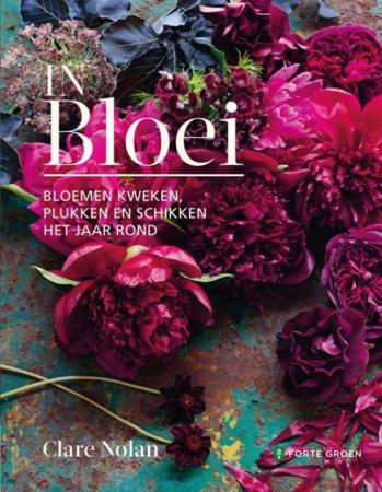 'In Bloei' van Clare Nolan