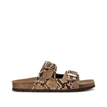 Chaussures en python