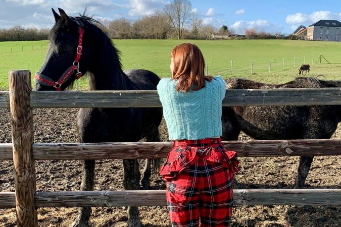 Even kennismaken met de paarden van de B&B.