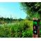 La Promenade Verte, d'Uccle à Woluwé