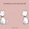 Le chat vous apprend l'estime de vous-même
