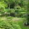 Arboretum Kalmthout – Kalmthout