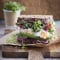 Vrijdag: sandwich met sojascheuten, ei en avocado