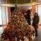De boom voor de knuffelaars onder ons<br /> @georgiec_taylor