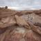IKEA x Mars Desert Research Station: RUMTID