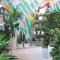 Urban Jungle bij My City Plants