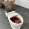 Toiletmok