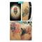 Virginie (37) wil haar tattoo kwijt na het verraad van haar vriendin