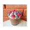 DAG 1: chocoladechiapudding met rode vruchten & kokospoeder