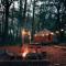 Une yourte dans les bois