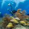 Florida Keys National Marine Sanctuary, Verenigde Staten