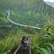 Les Haiku Stairs, Hawaï