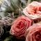 3 rozen