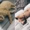 Charlotte en haar vriend kozen in 2018 voor de iets oudere kat Billie