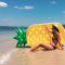 Pool float in de vorm van een ananas