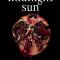 'Midnight Sun' van Stephenie Meyer