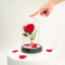 Lamp betoverde roos