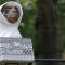 """Dimanche 27 décembre à 14h20: """"E.T. l'extraterrestre"""""""