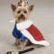 king pup royal dog costume.gif