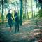 Crossen in de bossen