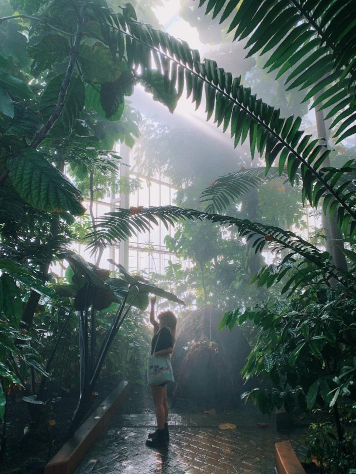 Le jardin Botanique de Meise