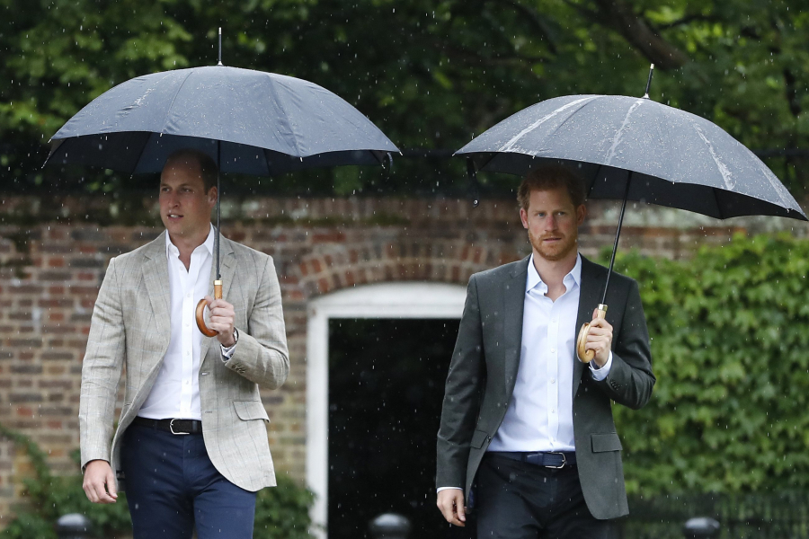 Prins Harry en William