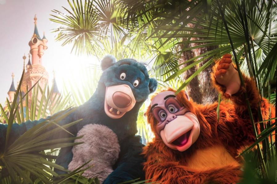 Disneyland Paris Organise Un Festival Du Roi Lion Et Du