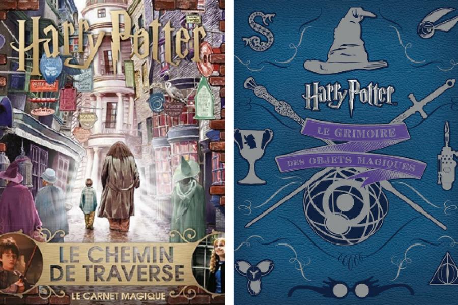On Veut 10 Livres Harry Potter Quasi Inconnus Et Qui