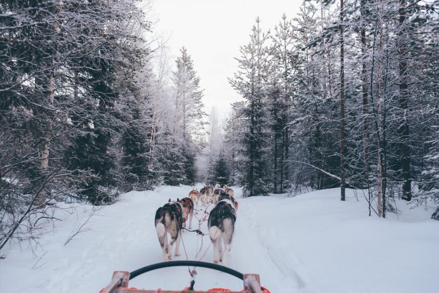 Winterbestemmingen