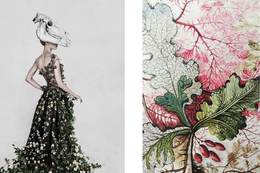 Fashioned from Nature - Victoria&Albert Museum