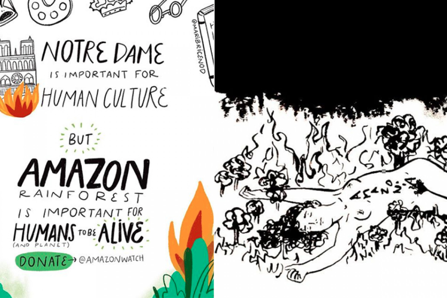 Amazonewoud vuur