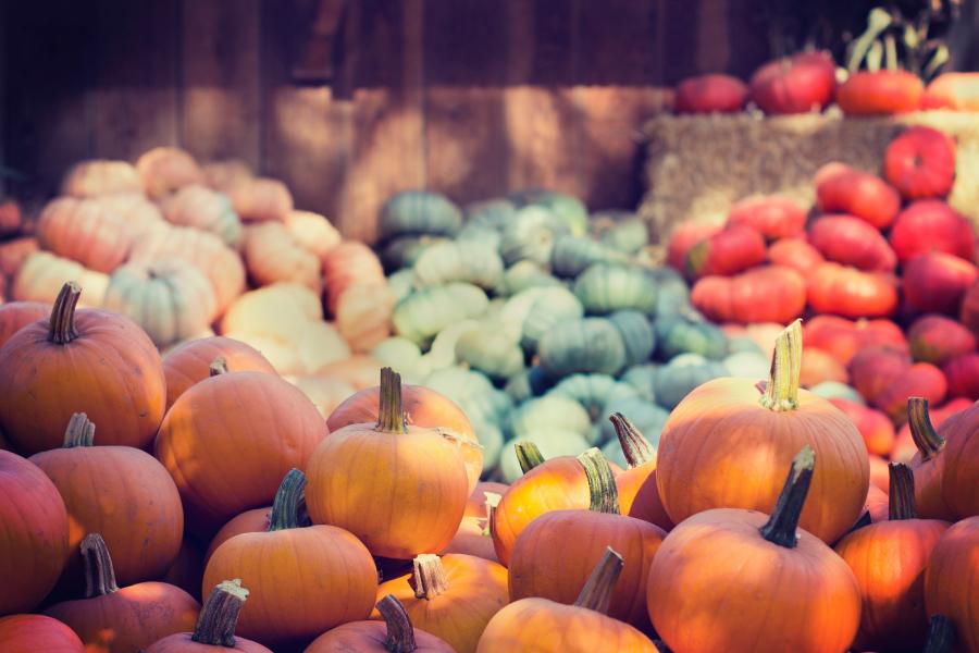 Aliments à consommer en automne
