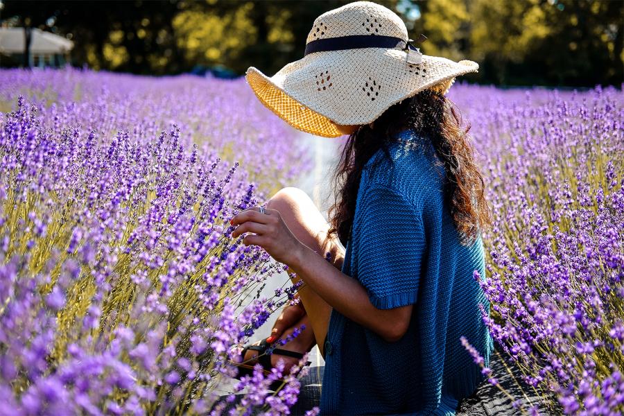 Thalys Zon naar Zuid-Frankrijk