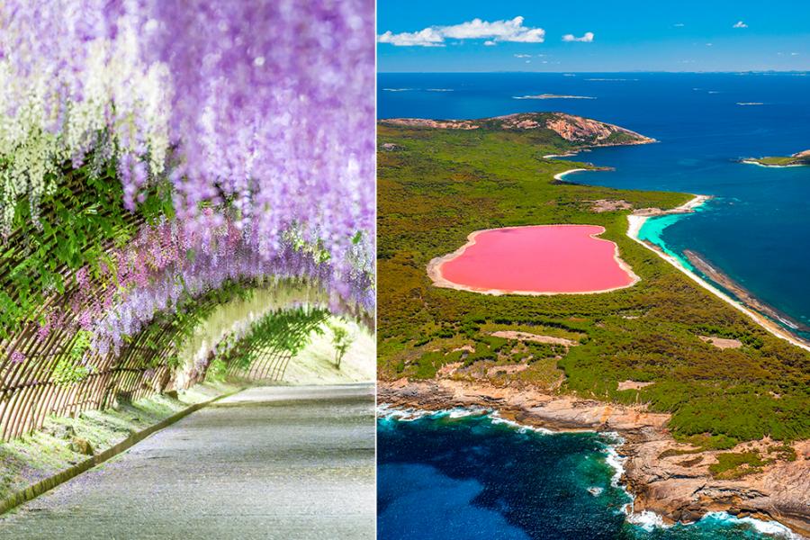 Kleurrijke reisbestemmingen