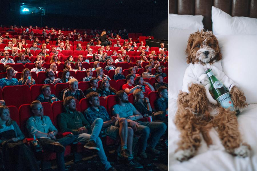 hond in bioscoop