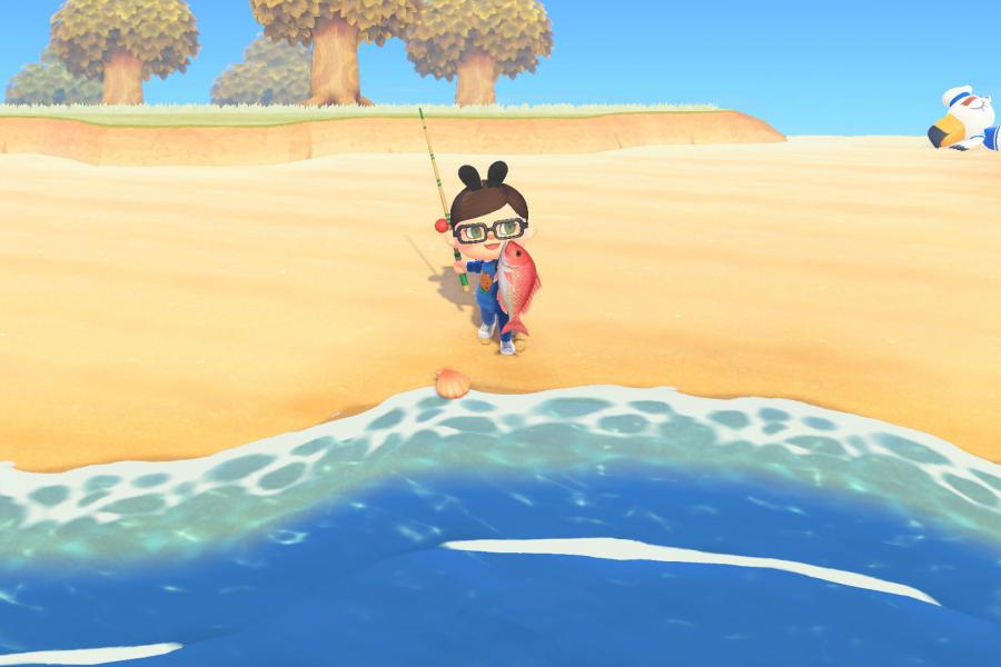 Animal Crossing New Horizons - DR