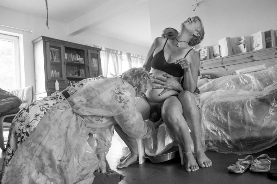 Regard de zèbre - Delphine Hachez