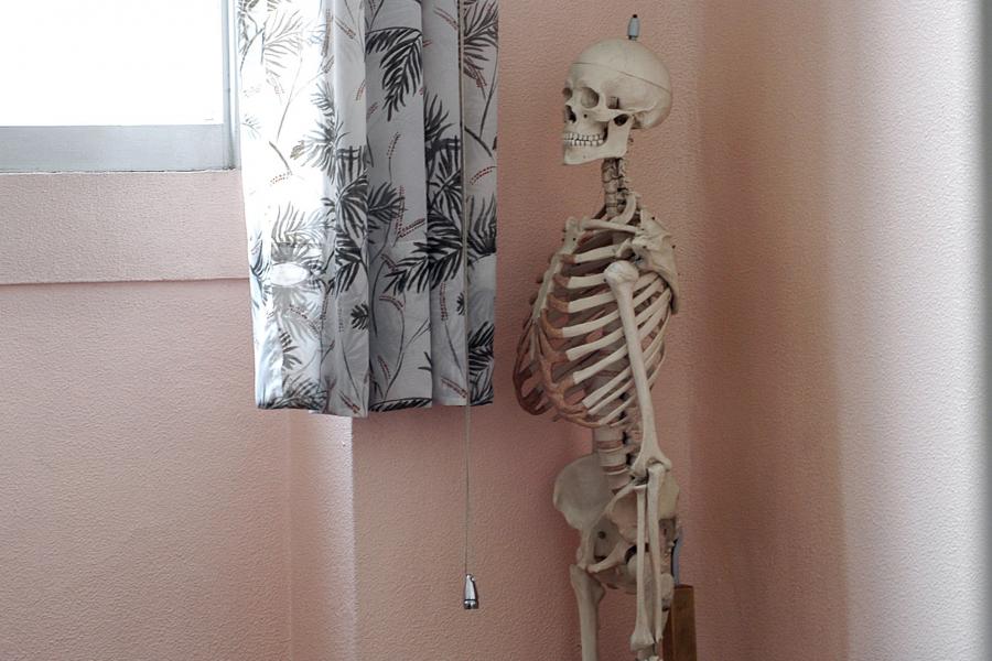 L'expo Human Bodies fait un flop - Getty Images