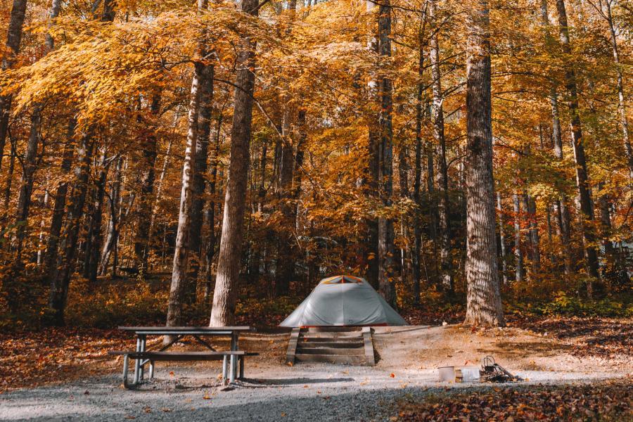 kamperen herfst