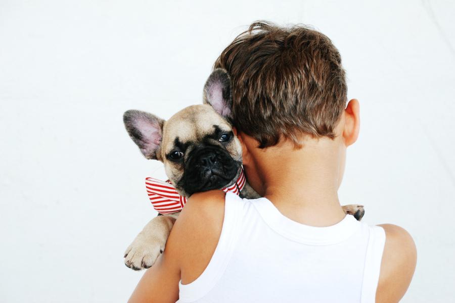 Kindvriendelijke hondenrassen