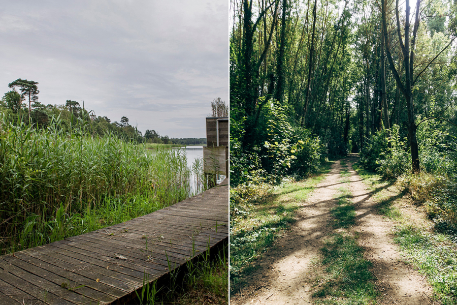 wandelingen Antwerpen