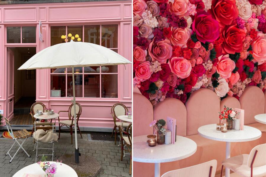 Roze hotspots in België