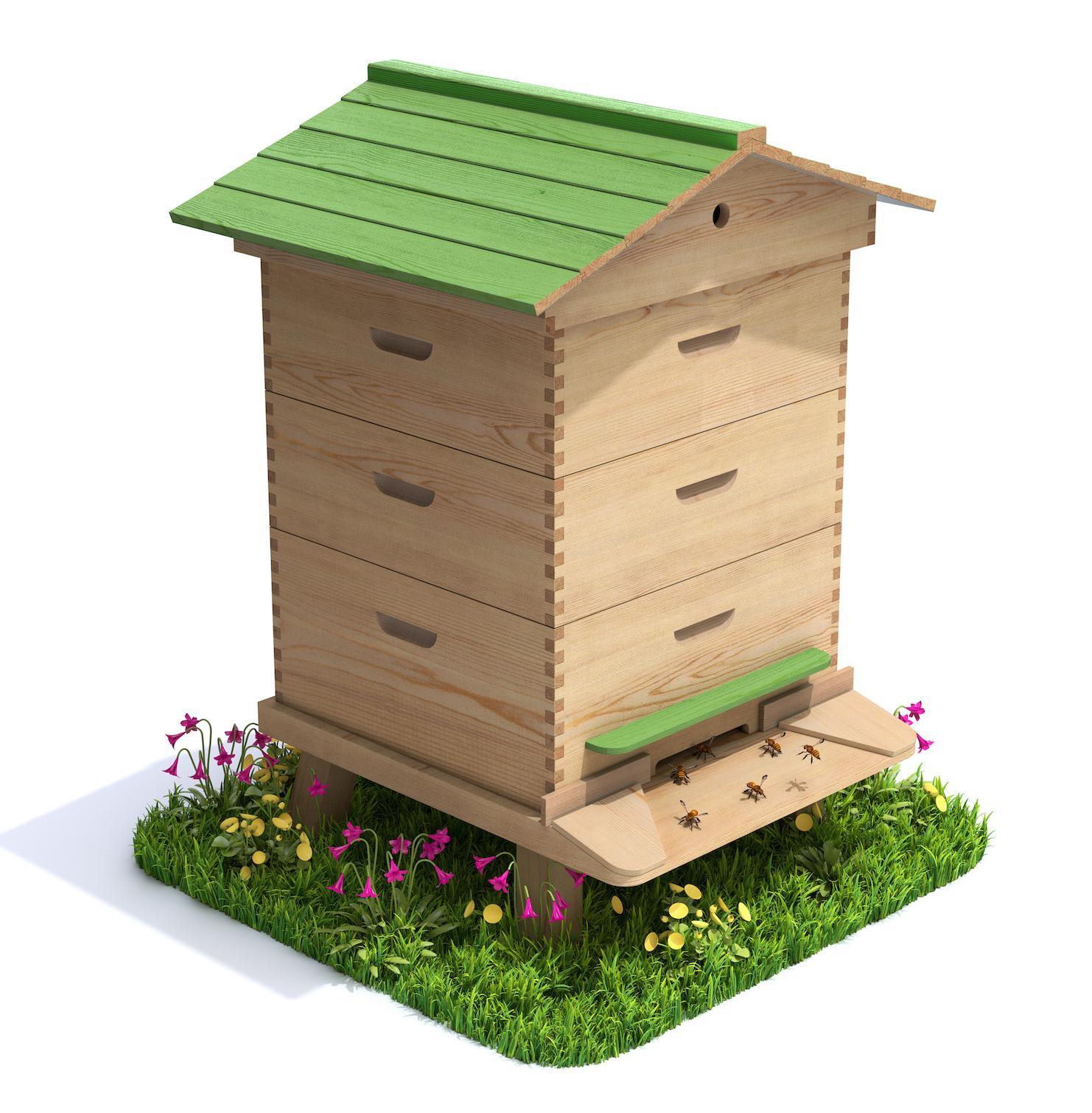 4 bonnes raisons d 39 avoir une ruche la maison femmes d. Black Bedroom Furniture Sets. Home Design Ideas