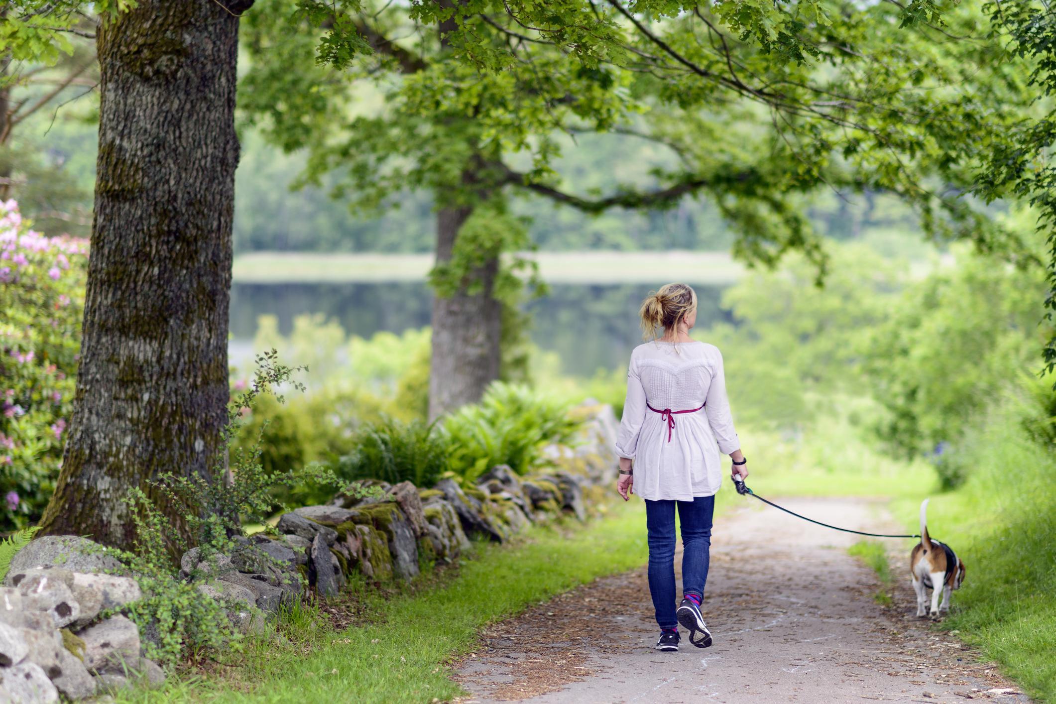 Marcher quotidiennement 30 minutes