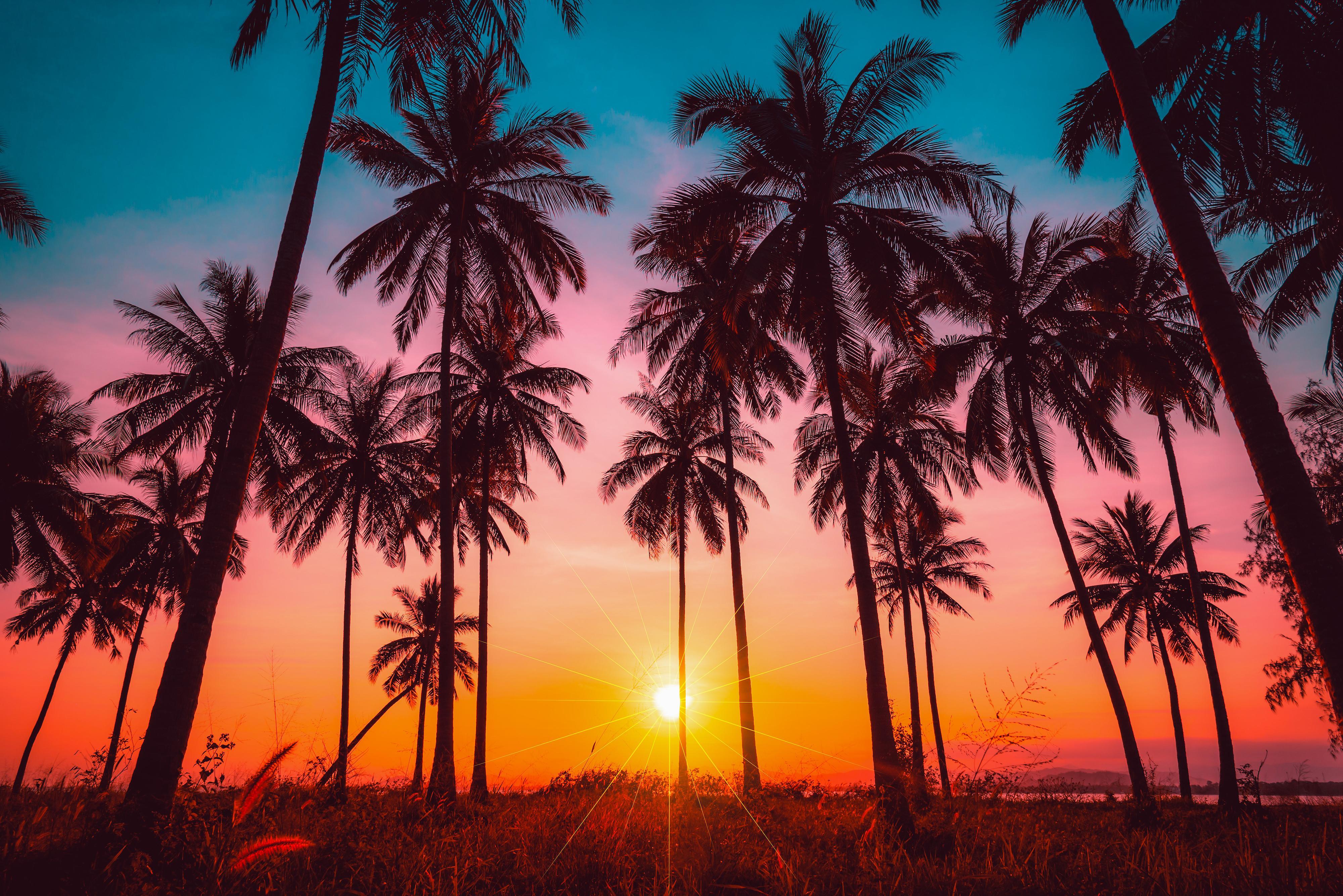 alerte job de r u00eave  photographier des couchers de soleil en am u00e9rique
