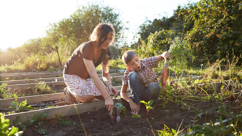 Koffiedik In Tuin : Dit is waarom je koffiedik in je tuin moet gebruiken libelle