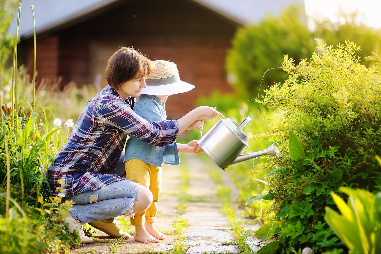 Repiquer Plants Oignons Blancs mémo: le calendrier jardin mois par mois - femmes d'aujourd'hui