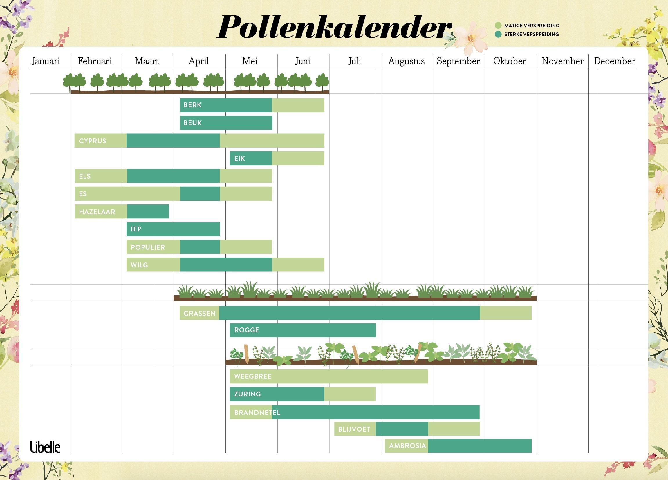 Pollen Kalender