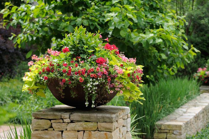 Slecht weer op komst zo bescherm je je planten tegen late - Best temperature for painting exterior ...